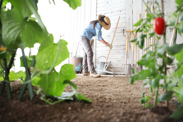 woman in the vegetable garden with rake from the wooden wall of tools, healthy organic food produce concept