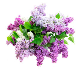 Foto auf Leinwand Flieder Fresh lilac flowers bouquet isolated over white background