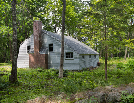 old house with chimney in the woods