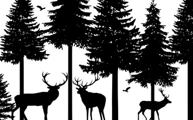 Deers and fir trees