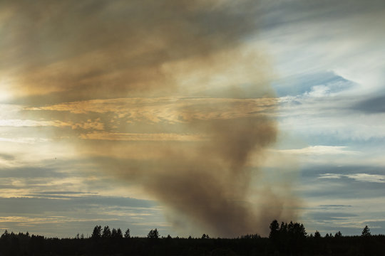 Forest fire in Washington State