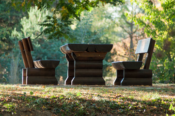 closeup of wooden picnic table in autumnal public garden