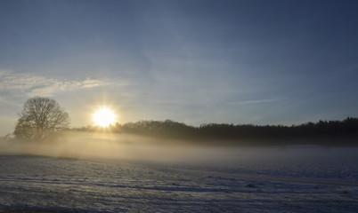 Aluminium Prints Salmon Snowy fields in a foggy morning