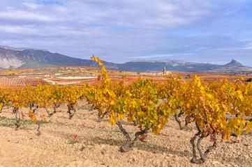 Wall Mural - Viñedos en otoño con Elvillar al fondo, Rioja Alavesa, España
