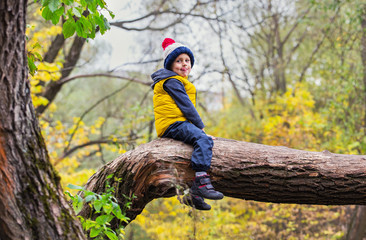 A little boy sits on a fallen tree trunk, dressed in warm clothes and a hat with a punpon