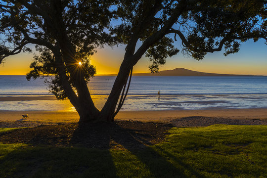 Sunrise Time at Takapuna Beach Auckland New Zealand - View to Rangitoto Island