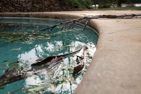 Debris in pool after hurricane Michael