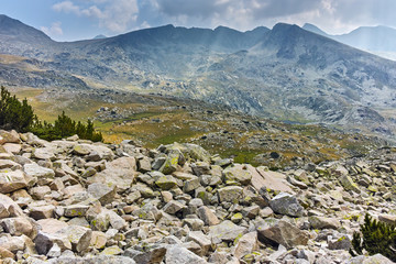 Summer landscape of Spano pole, Pirin National park, Bulgaria