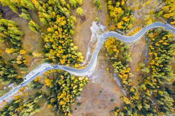autumn winding mountain road