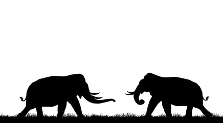 silhouette elephants on white background