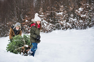 Grandfather and small girl getting a Christmas tree in forest. Copy space.