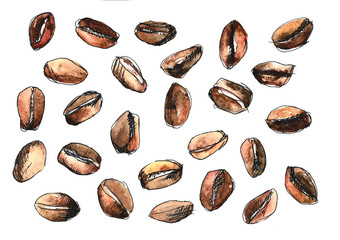 Pretty simple watercolour set of coffee beans