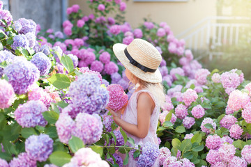 Fond de hotte en verre imprimé Hortensia Little girl is in bushes of hydrangea flowers in sunset garden.