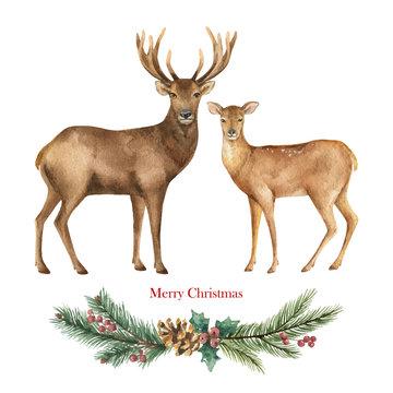 Christmas vector Reindeer with a green fir branch.