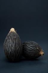 Among these exotic Foxtail palm seeds. Wodyetia bifurcata. Black, brown amazing seeds on black background