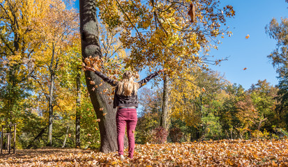 Panorama Freude im Herbst