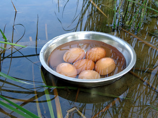 Bowl with eggs in the water near the lake shore