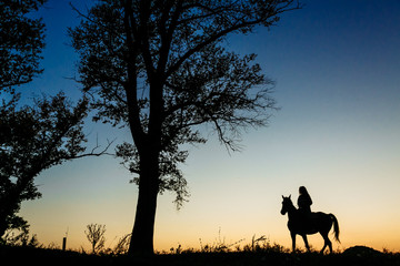 silhouette of a woman riding a horse in a field near a tree. Beautiful sunset sky in the background