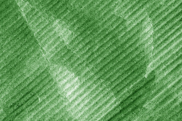 Soft plastic material background in green color.