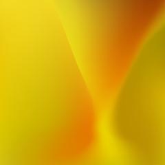 Soft Blurred Background