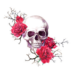 Human skull in branches, red rose flowers. Watercolor for Halloween
