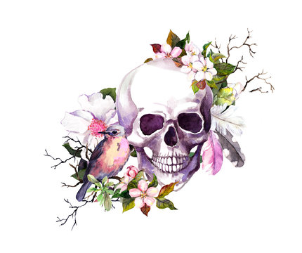 Human skull with cherry blossom flowers , feathers, bird for Day of the Death. Watercolor