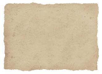 古紙ビリビリ茶