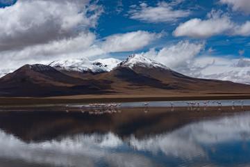 Foto op Canvas Donkergrijs Laguna in Uyuni
