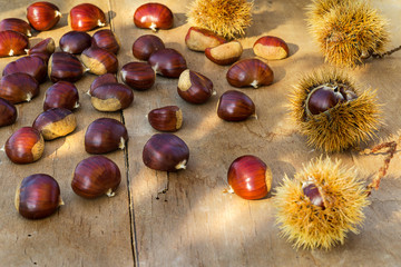 Chestnuts on the old wooden and rustic table.