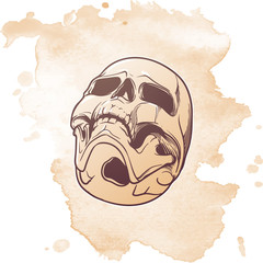 Human Skull hand drawing. Bottom angle. Lnear drawing isolatedon grunge background. EPS10 vector illustration