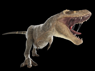 3d rendered illustration of a T-rex on black background