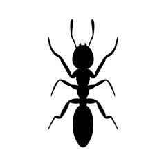 Ant the icon, logo on a white background