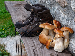 Porcini mushrooms and hiking boots on a bench