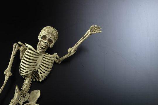 Human skeleton call you on background