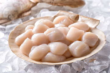 Fresh Raw Scallops