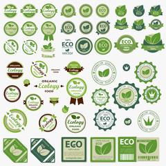 Big set of Eco labels with retro vintage design. Vector