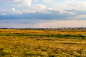 Plains Landscape