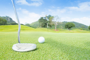 golf ball on green grass ready to putt on green in beautifull tropical golf course for background or poster.