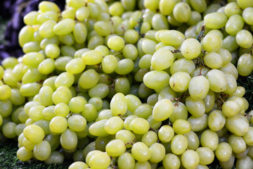 green grape in market as background