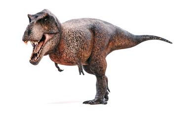 3d Tyrannosaurus rex render on white background