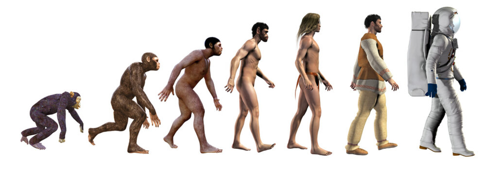 human evolution, from ape to astronaut, 3d illustration