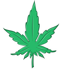 marijuana leaf cartoon isolated on white background