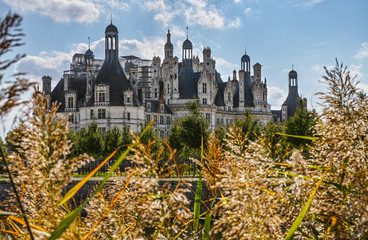 Chateau de Chambord from grass