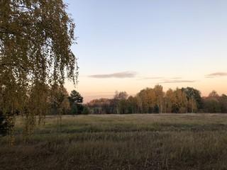 sunset over field