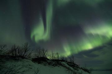 Aurora in a black northern sky