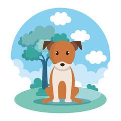cute dog in park