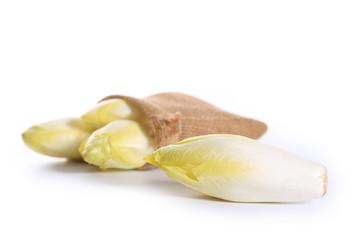 endive sur fond blanc,salade
