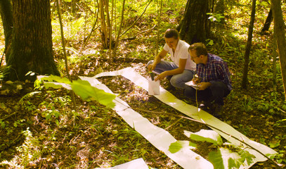 Two ecologist getting samples of soil in the forest inside square marking site. Field work