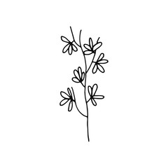 plant twig with leaves stem icon. sketch isolated