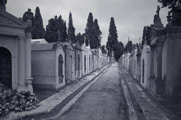 European cemetery street